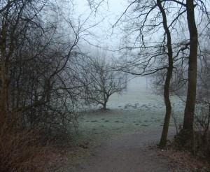Es wird Herbst Der Zugang zum Grundstück im Nebel ( Zugang über den Wanderweg von Süden)